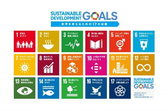 H30青年国際塾SDGsサムネイル